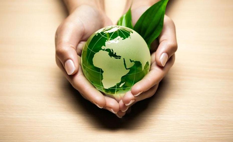 consultoria-ambiental